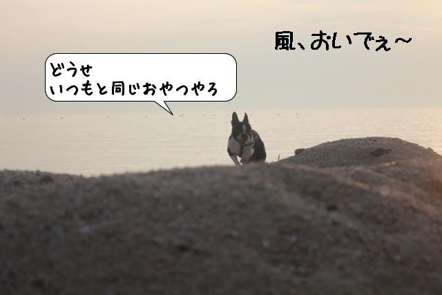 20110726_210627.jpg