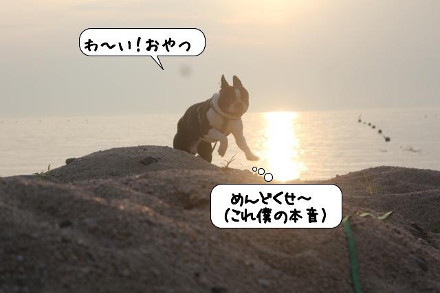 20110726_211054.jpg