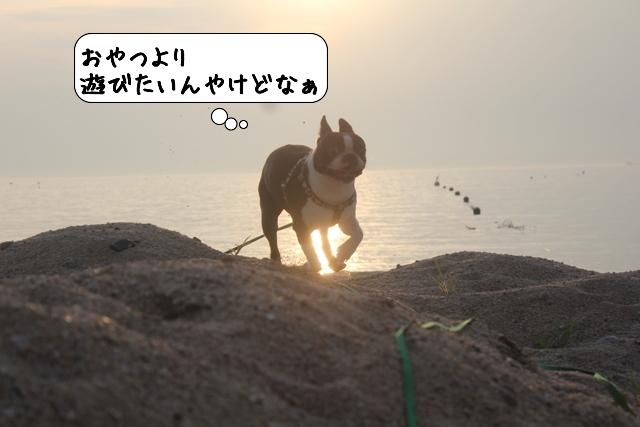 20110726_211239.jpg