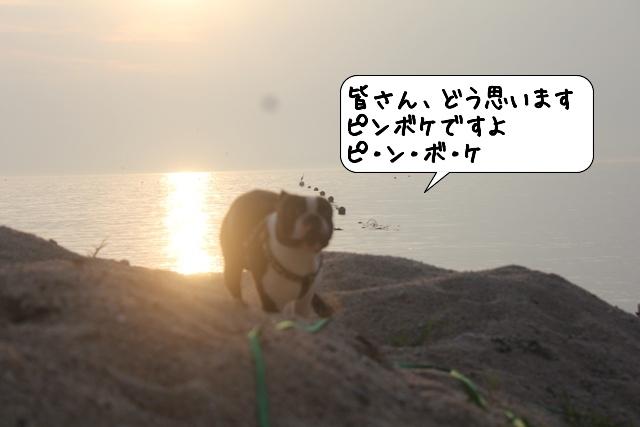 20110726_211532.jpg