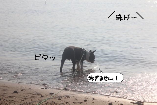 20110814_002750.jpg