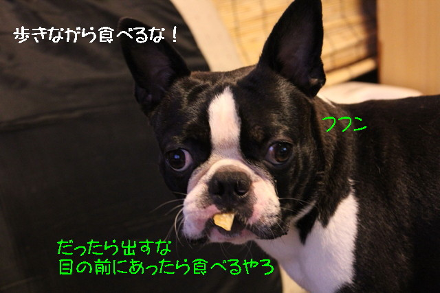 IMG3_4926.jpg