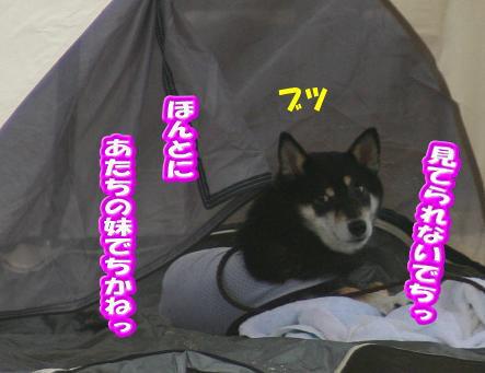 220709-8.jpg