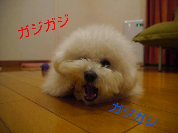 CYMERA_20140113_200951.jpg