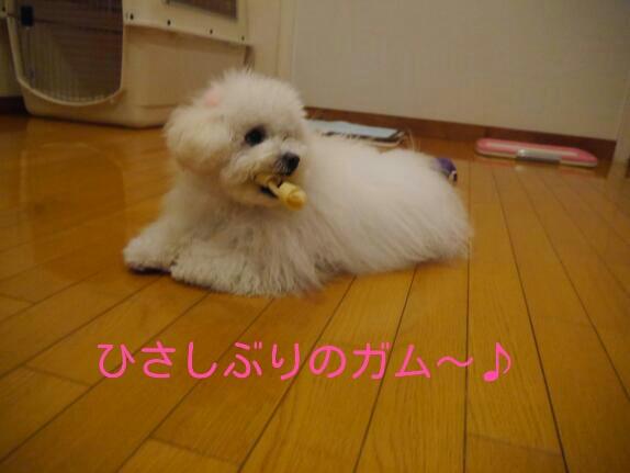 CYMERA_20140113_201133.jpg