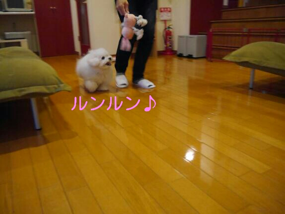 CYMERA_20140113_232729.jpg