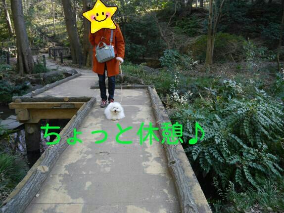 CYMERA_20140122_013934.jpg