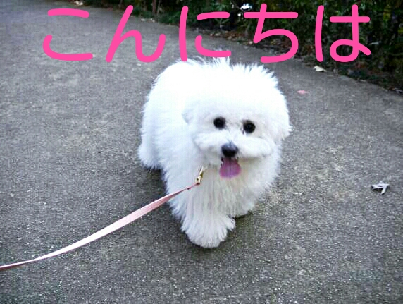CYMERA_20140203_022506.jpg