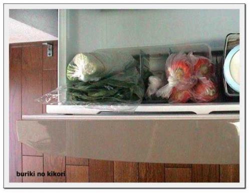野菜室に入れて1フレーム