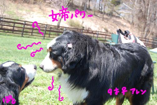 jyoteirawa.jpg