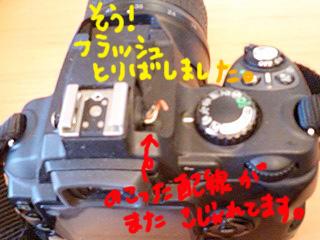 mieru4.jpg