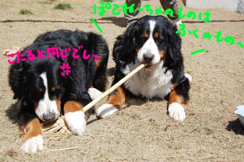 yadeshimae.jpg
