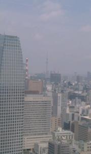 東京タワーから見えるスカイツリー♪