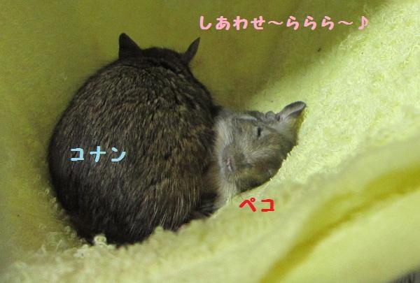 006_20101014143734.jpg