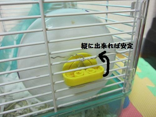 008_20100920222453.jpg