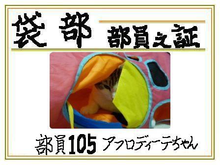 201012141443521da.jpg