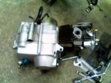 KC361610.jpg