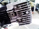 KC361612.jpg