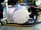 KC361617.jpg
