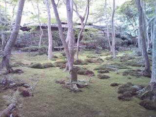 祇王寺のお寺