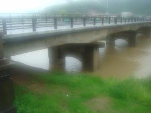 DSC08980_convert_20100524132842大水龍野橋