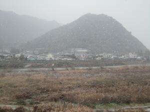 DSC01467convert_20110101001311 雪景色