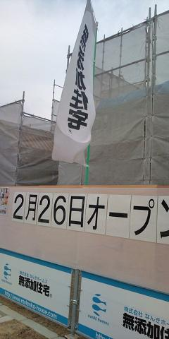 20110115135428.jpg