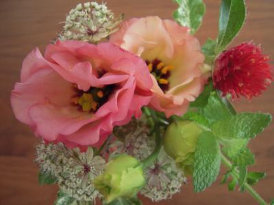 ai+flower_convert_20130724222826.jpg