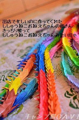 1130217_7010a.jpg