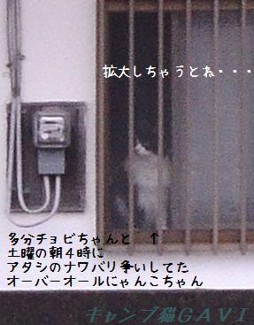 130512_0507.jpg