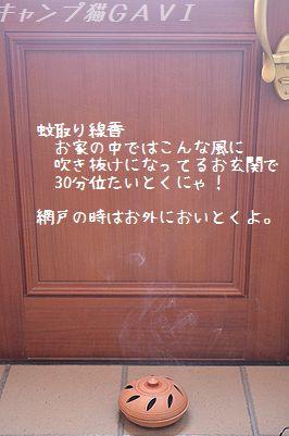 1306_2047.jpg