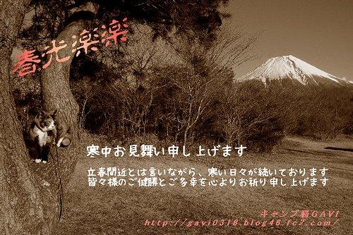 寒中見舞3