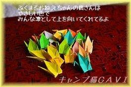 b130217_6961.jpg
