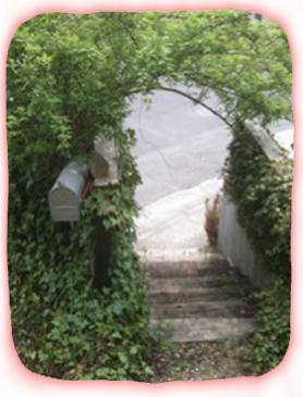 2012.4.17.MJファクトリー階段