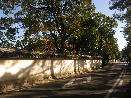 薬師寺への道 ブログの2