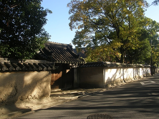 薬師寺への道 ブログの1