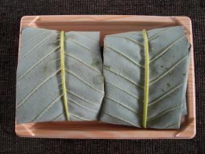 朴葉寿司1