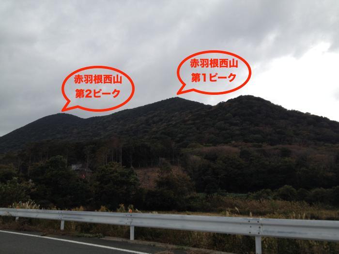 IMG_2561_th.jpg