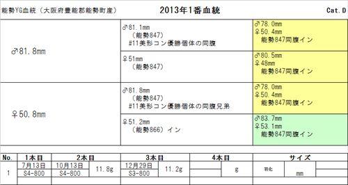 2013YG01br_R