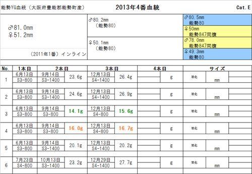 2013YG04br_R