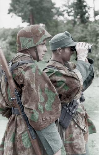 Grenadiers koloriert