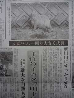 八重山毎日新聞