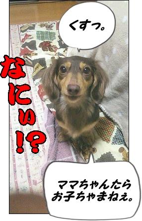 moblog_a314a592[1]