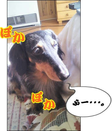 moblog_9ffb5324[1]