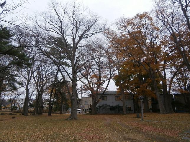 公園の秋(後)