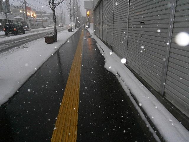 融雪歩道。