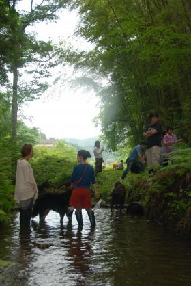川バーベ2