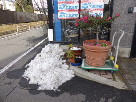 12-12 雪