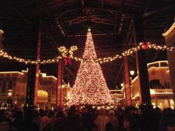 Tokyo Disney Land 2009 Chistmas Tree
