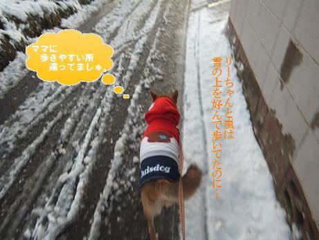 004c_20120124211847.jpg